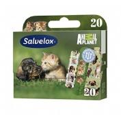Salvelox - aposito adhesivo (animals 20 u)